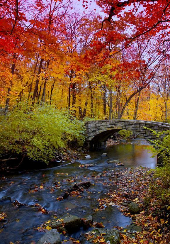 Autumn Bridge, Chicago, Illinois